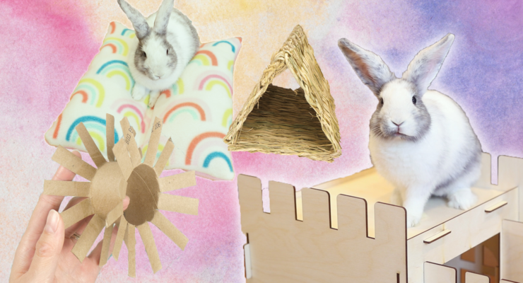 Bunny DIY Projects blog post pic